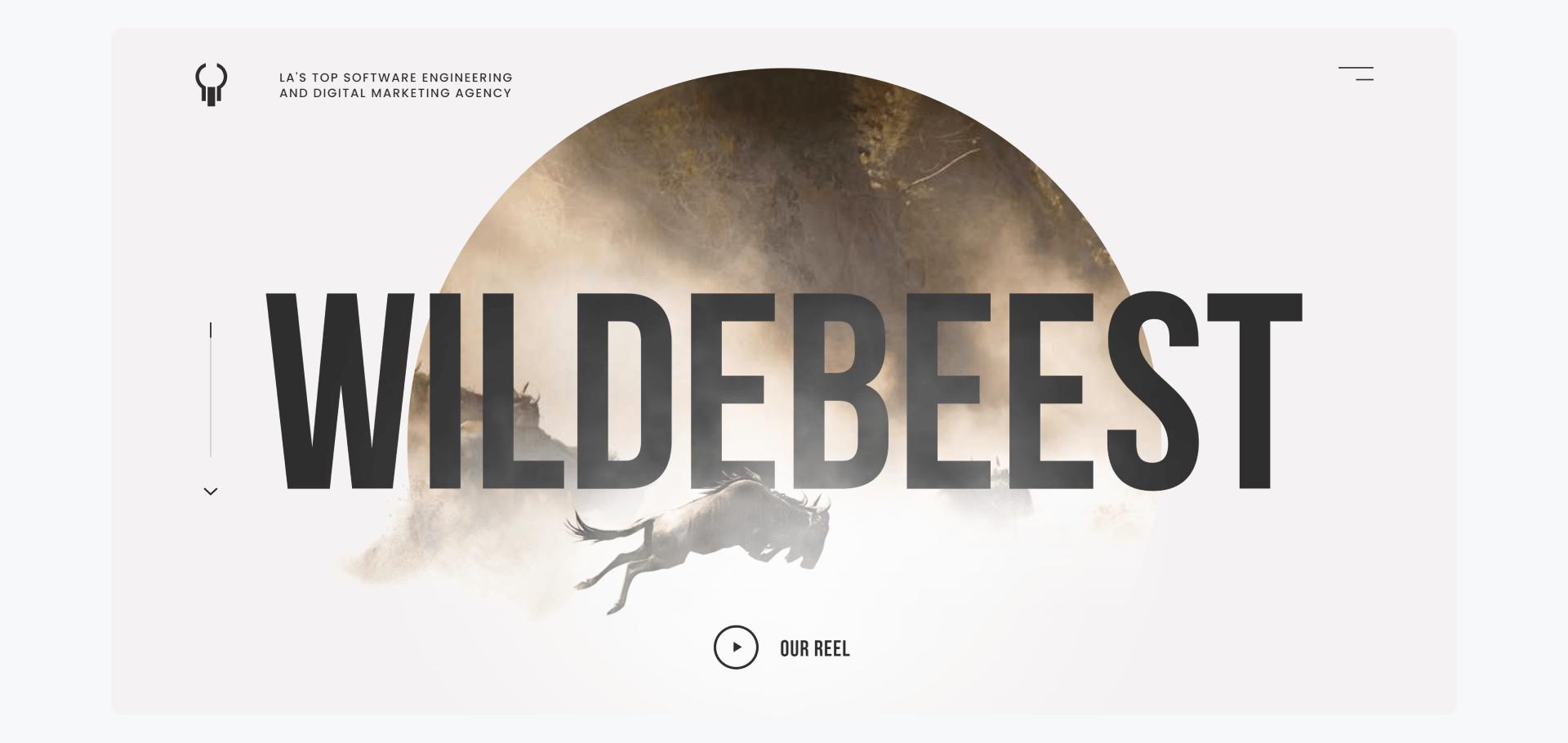 Wildebeest - development company home page